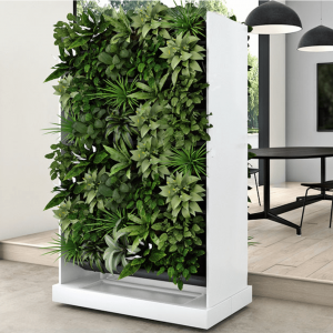 Plant Walls and Planters
